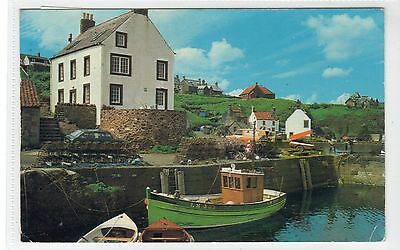 THE HARBOUR, ST. ABBS: Berwickshire postcard (C15532)