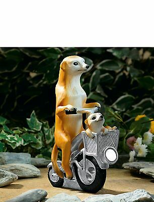 Meerkat & Baby on a bike with Solar Light