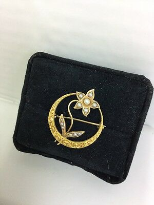 Art Nouveau Seed Pearl Pin In Solid Gold (J35)
