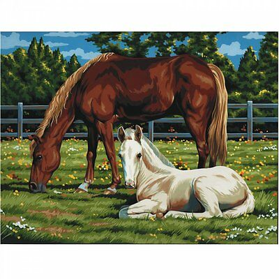 Royal & Langnickel Horses In Field Painting By Number Artist Canvas Series