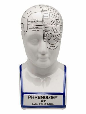 Phrenology head with bust - brain acc. to fowler - light porcelain