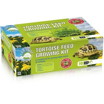 ProRep Tortoise Feed Full Growing Kit - Herman Horsfield Natural Weed Seed Food