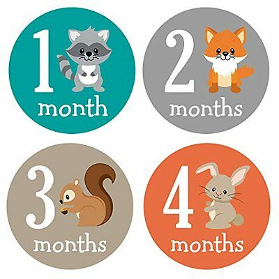 Pinkie Penguin Woodland Animals Baby Monthly Stickers - Milestone Onesie Sticker