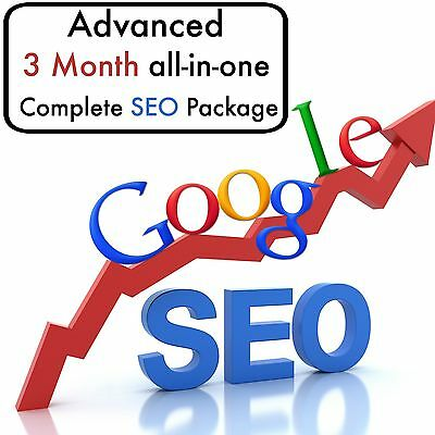ADVANCED STRATEGIC PLAN 3 Month Complete All In One SEO & SEM PACKAGE Google #1