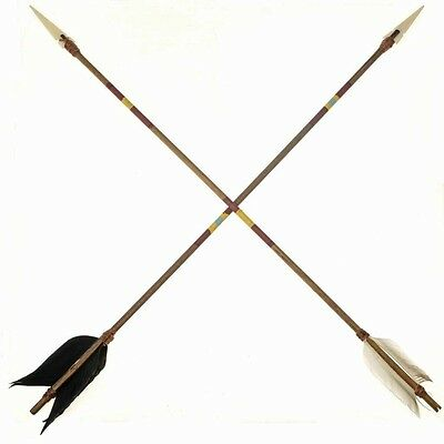 Navajo Made Painted Indian Arrow  /One Arrow