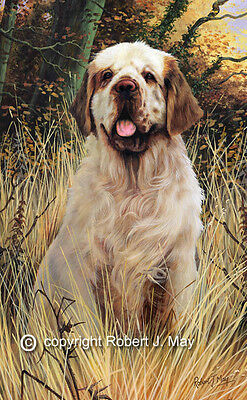 Clumber Spaniel Limited Edition Print by Robert May