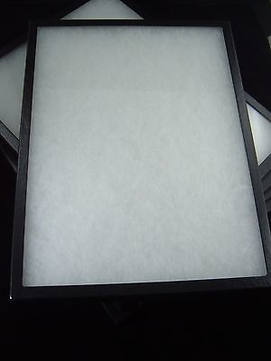 five jewelry display case riker mount display box shadow box collection 8X12 X 2