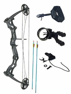 Archery Hawk Hunting Adult Compound Bow 50-70lb with Arrows, Sight & Arrow Rest