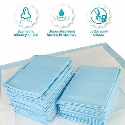 PUPPY DOG CAT TOILET WEE TRAINING PADS, LARGE FLOOR PUPPY PADS 100 Pack+ 5 FREE!