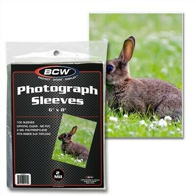 Pack of 100 BCW Clear Archival 6x8 Soft Poly Photo Sleeves acid free 6 x 8