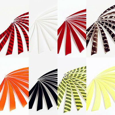 50Pcs Colorful Handmade Left Turkey  Shield Feathers Hunting Arrow Fletching
