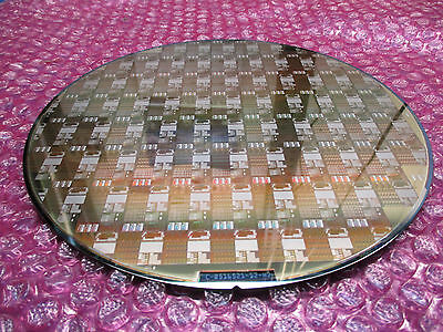"""Premium 8"""" Silicon Wafer - Large Gold Chipset Pattern!!! -  QTY!"""
