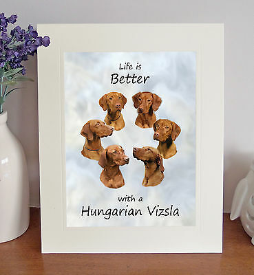 "Hungarian Vizsla 'Life is Better' 10""x8"" Mounted Picture Print Image Lovely Gift"