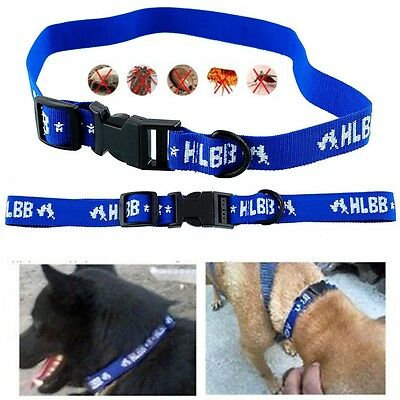 Safety Dog's 4-Month Control Anti Fleas Ticks&Mosquitoes Collar Neck Strap