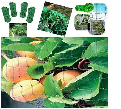 Garden Plant Netting Protect  Fruit Tree Against Rodents Birds  33-Ft x 6-Ft