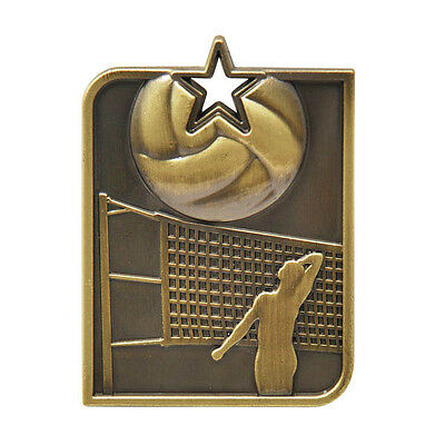 Volleyball Antique Medal Gold Rectangle With Neck Ribbon Engraved FREE