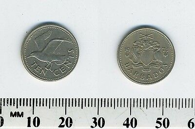 Barbados 1973 - 10 Cents Copper-Nickel Coin - Tern flying left