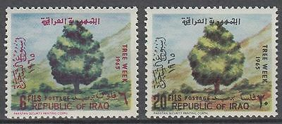 Irak Iraq 1965 ** Mi.403/04 Pflanzen Plants Baum Tree Laubbaum Broadleaf [i657]