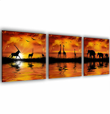 African Animals At sunset Framed Canvas Prints x 3