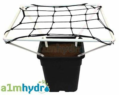 Scrog Line Pro 1.0 Plant Support Net Netting 50cm X 50cm Grow Tent Hydroponics