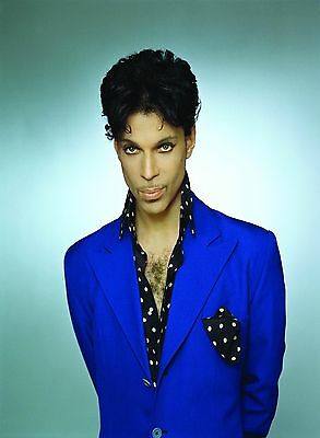 Prince Rogers Nelson - Handsome Wall Poster  - 30 in x 22 in - FAST SHIPPING