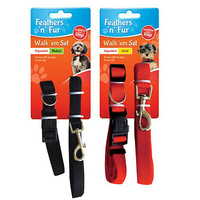 Dog Lead & Collar Set. Choices: Small & Medium, Black Or Red