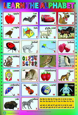 """013 HUGE LAMINATED KNOW LEARN ENGLISH ALPHABET A-Z CHILDREN 14""""x21"""" POSTER"""