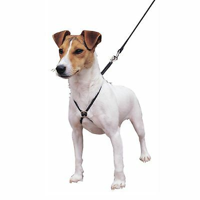 Lupi Puppy & Dog Non Pull Training Harness - SMALL