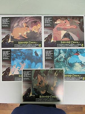 """""""Watership Down"""" Lot of 5 Lobby Cards / Directed by Martin Rosen/ Movie Posters"""
