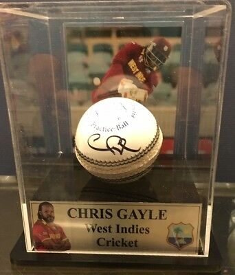Chris Gayle Signed Ball In Display Case