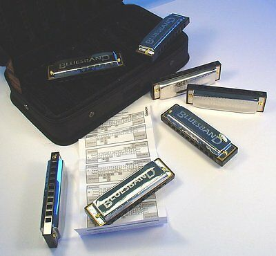 91105 Hohner Bluesband Harmonica Package - 7pc