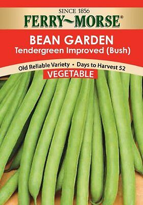 Ferry Morse Tendergreen Bean Seed Packet, New, Free Shipping
