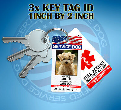 SERVICE DOG ID CARD KEY CHAIN TAG - Customized WITH YOUR PET PIC AND INFO -