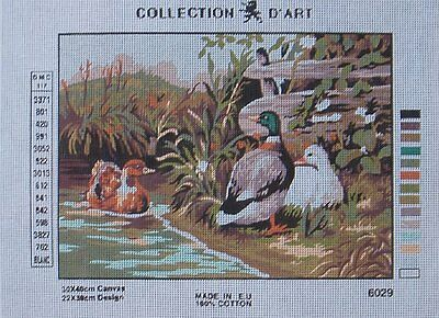 Discontinued Needlepoint canvas - Ducks 6.029 Collection d'Art