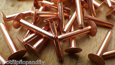 "50 x SOLID COPPER FLAT HEAD RIVETS 1/8"" x 3/4"" LARGE HEAD 3mm x 21mm 10g hose"