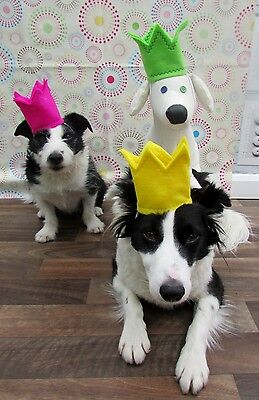 Dogs Birthday Party Crowns. Let your dog be king Handmade in felt by Mrs Nibbles