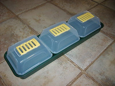 Windowsill Propagator Set With 3 Seed Trays And Ventilated Covers