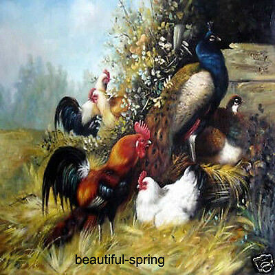 """Art Animals oil painting family decorates :Peafowl And Chicken 24x36"""""""