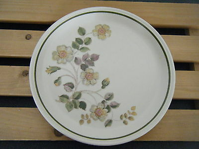 C4 Pottery M & S Autumn Leaves Plate 22x3  cm  3F5A