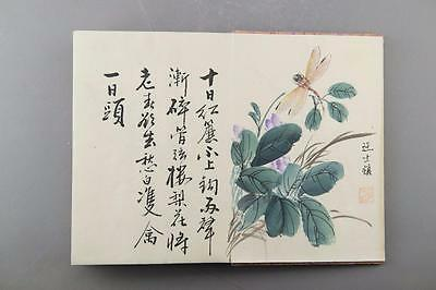 Watercolor Book of Insects Signed Wang Shishen 1686-1759