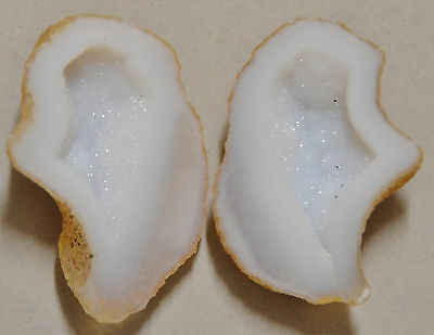 Tabasco Geode 1 Pair Cut and Polished Great for Jewelry 71797