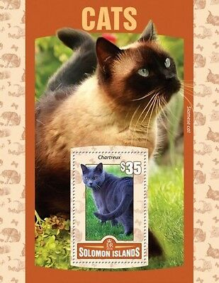 Z08 Imperforated SLM16103b SOLOMON ISLANDS 2016 Cats MNH