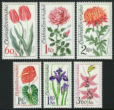 Czechoslovakia 1890-1895, MNH. Flowers.Tulips,Rose,Anthurium,Chrysanthemum, 1973
