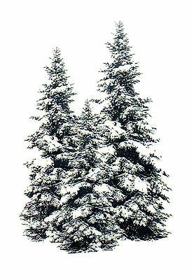 Winter Pines Trees Deep Red Cling Rubber Stamp