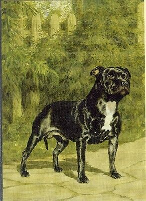 Illustrated Breeds Note Cards (blank) NOS Staffordshire Terrier