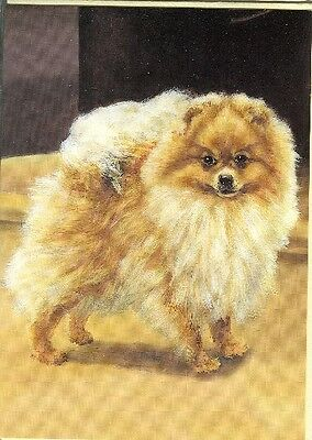 Illustrated Breeds Note Cards (blank) NOS Pomeranian by Diana Howorth
