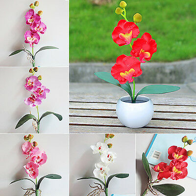 WOW Beautiful Butterfly Silk Flower Home Wedding Party Phalaenopsis Bouquet