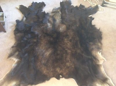 Tanned Moose Hide/taxidermy/animal Hair/native American/rendezvous/tanned Fur