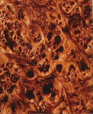 hydrographics Water Transfer Film 50cm x 50cm Walnut burr Free P&P in UK