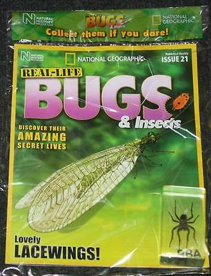 National Geographic Real Life Bugs & Insects Magazine #21 Devil Spider